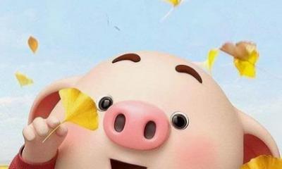 猪年幽默搞笑祝福语